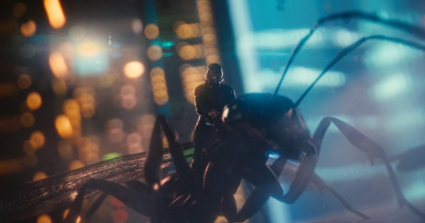 Photo d'Ant-Man avec la fourmi volante