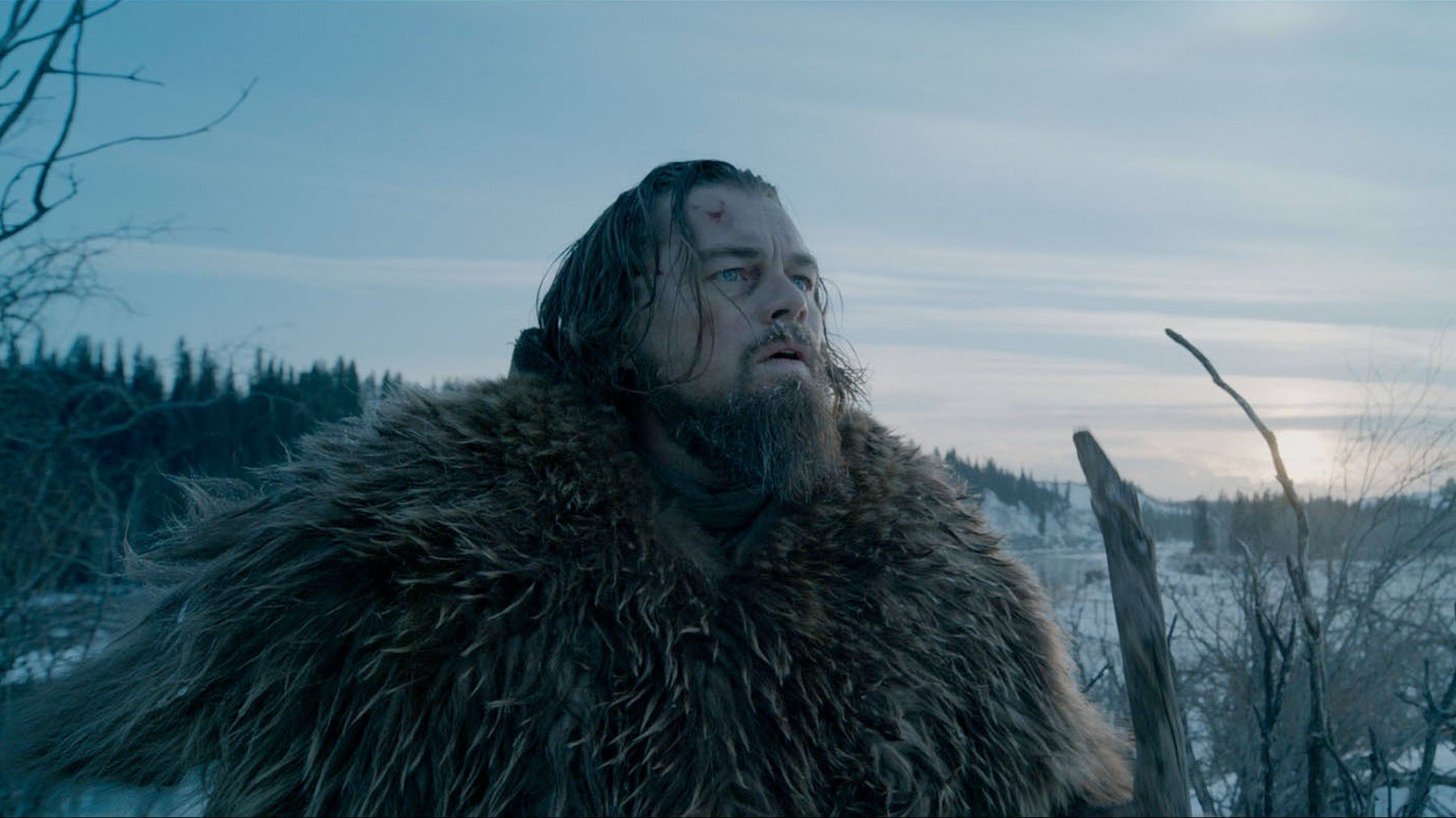 Photo du film The Revenant avec Leonardo DiCaprio