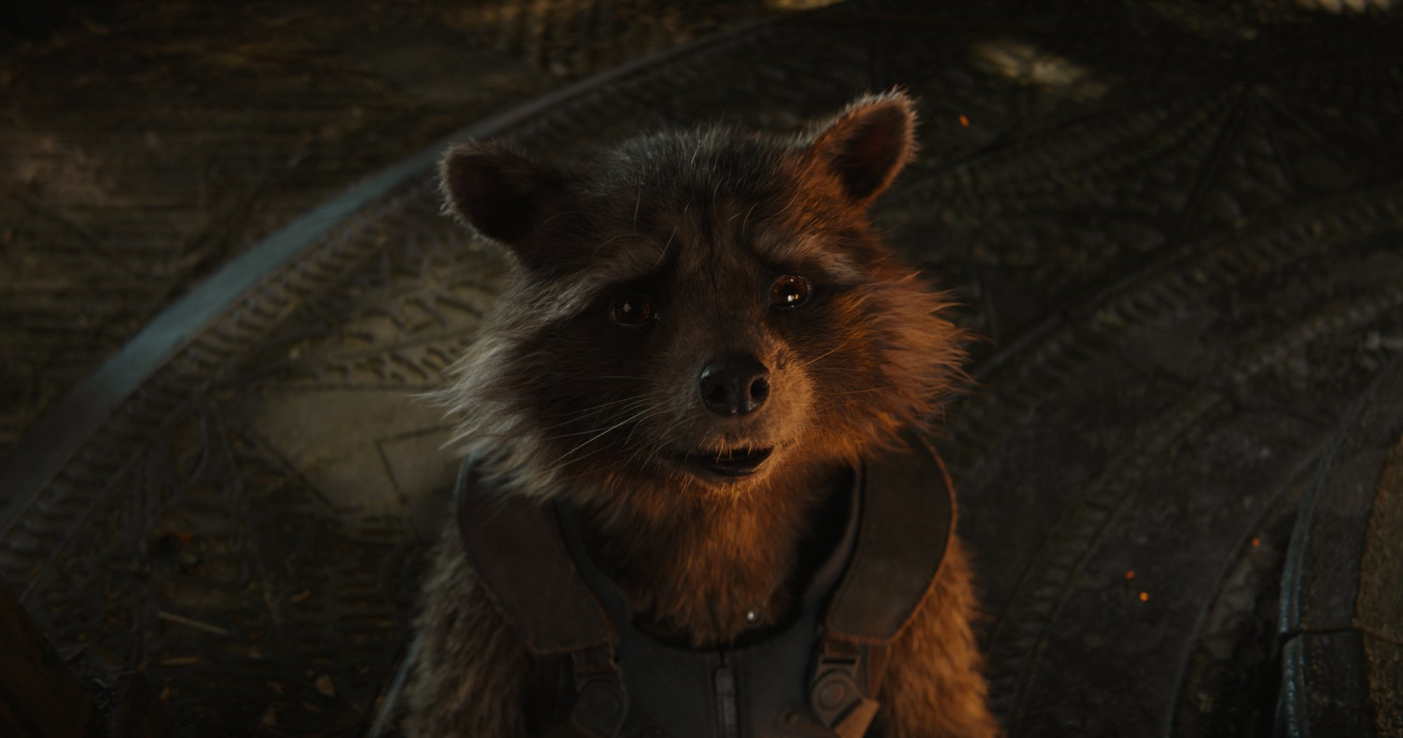Photo du film Avengers: Endgame avec Rocket Raccoon en 2013